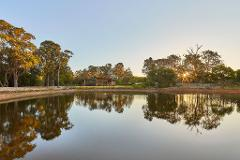 Wine Sunsets at Passel Estate - Relax into the Evening at Passel Estate