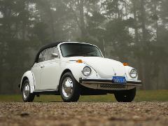 1978 VW Bug