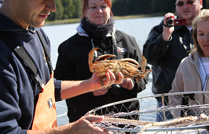 Misty Fjords and Crab Feast Tour