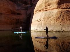 3 Hour Kayak/Paddleboard Tour