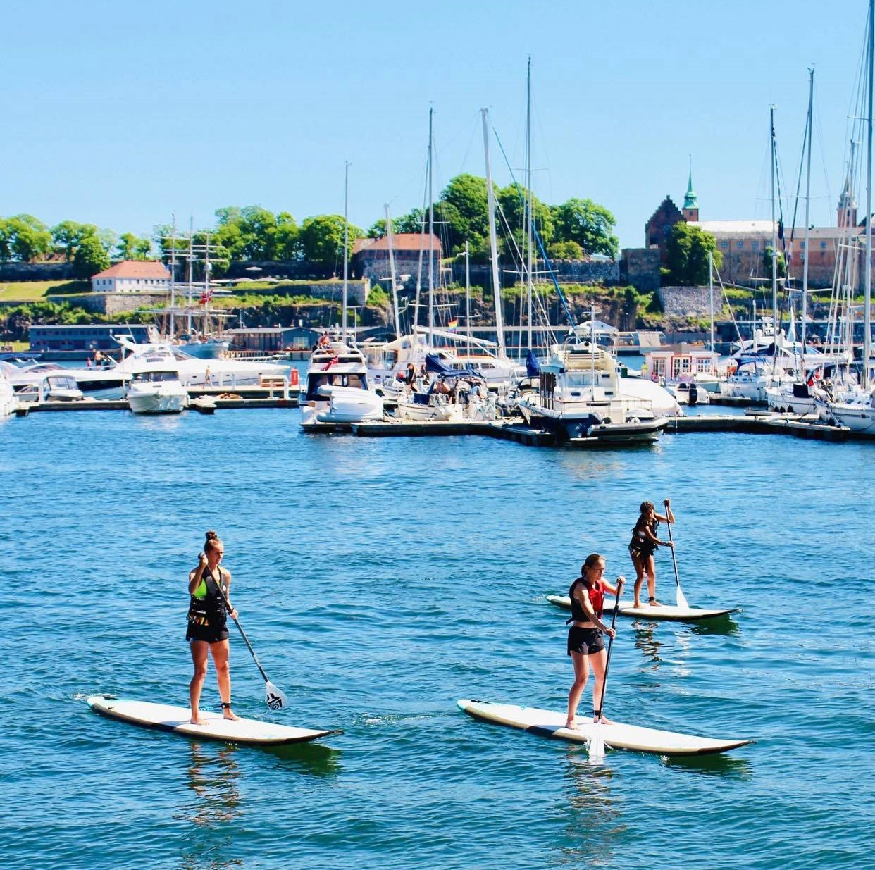 SUP Beginners Course