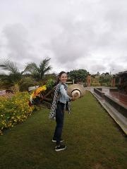 Medellin Flower and Silleteros Tour
