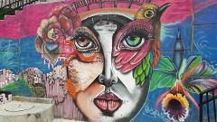 Graffiti tour in Comuna 13 Private 1/2 Day Tour