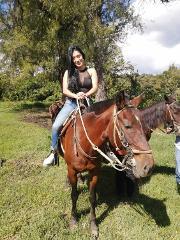 Horse Ride Medellin, Antioquia (2 hrs ride)