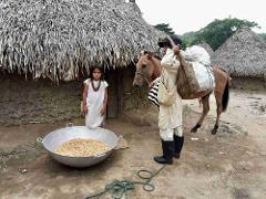 Kogi Indigenous Village Day Trip