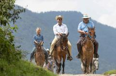 Horseride, Willys Ride, Coffee and Salento Tour from Pereira