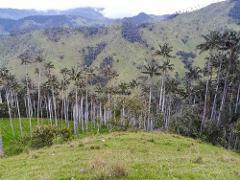 Cerro Machin from Salento Full Day Tour