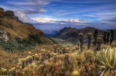 Salento to Nevado del Ruiz Day Tour