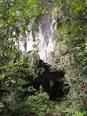 Reserva Natural Cañon Rio Claro (including Rafting OR Caving)