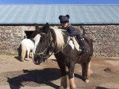 Own A Pony_Half Day