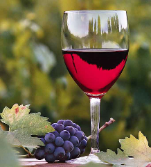 Rutherglen Winery Walkabout