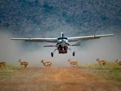 Overnight Flying Safari to Maasai mara