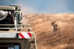 3 Days/2nights  Tarangire, Ngorongoro, Lake Manyara