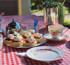 Scones, Jam & Cream add-on to your paid visit to Echo Farm.
