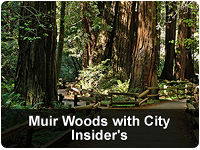 Muir Woods & City Insider's Combo