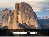 Total Yosemite Experience℠ & Giant Sequoias