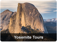 Total Yosemite Experience℠ & Giant Sequoias