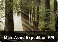 Muir Woods Expedition & Sausalito PM with Ferry Bay Cruise