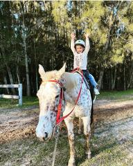 30 minute First taste of horse riding