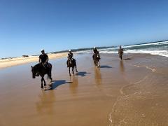 1 Hour Intermediate Beach Ride