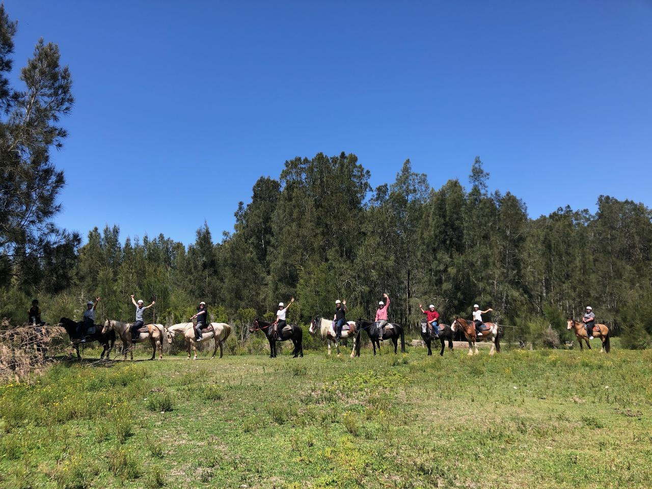 50 minute Beginner Bush Trail Ride