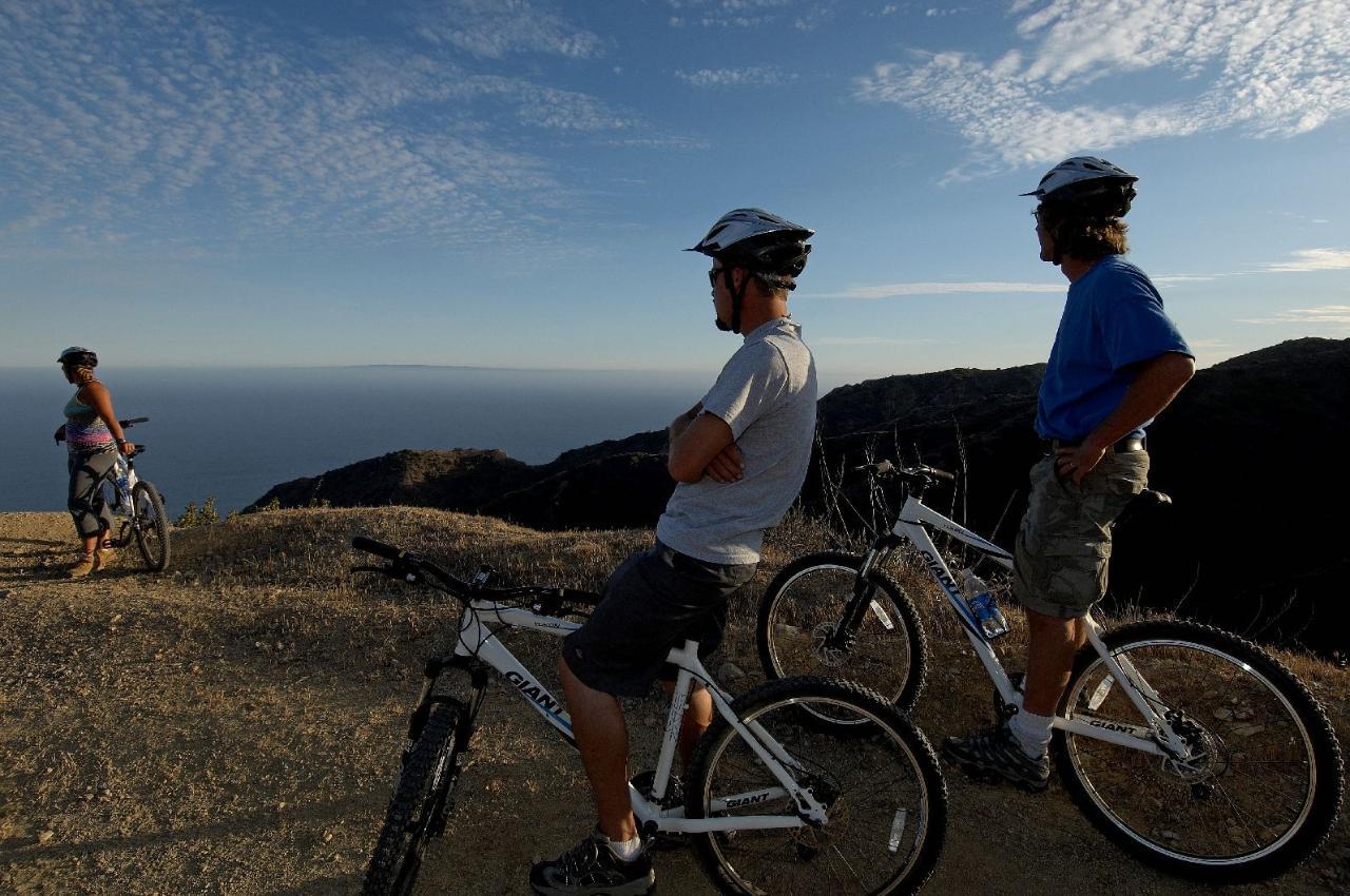 Mountain Bike With Buffalo Tour Catalina Island
