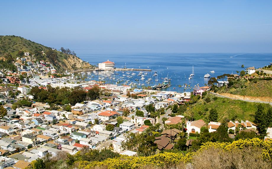 Avalon Scenic Drive Tour Catalina Island