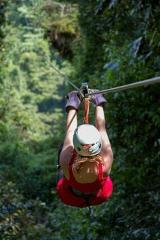 Caribbean Canopy & Zipline - Cahuita Tour