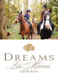 Dreams Las Mareas Tours COMBO Day Tour: Borinquen Zipline, Horseback, Hot Springs, Mud Baths
