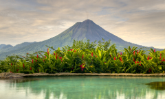 Arenal COMBO Tour: Volcano Hike + Rainforest & Natural History Walk & Ecotermales Hot Springs + Dinner