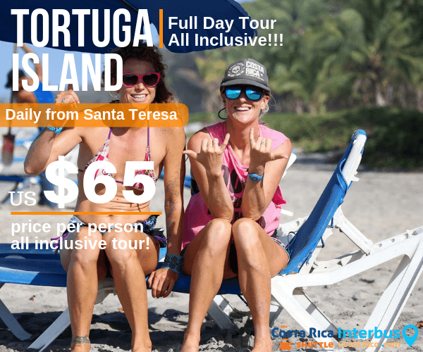 Tortuga Island Full Day Tour from Banana Beach Bungalows Santa Teresa