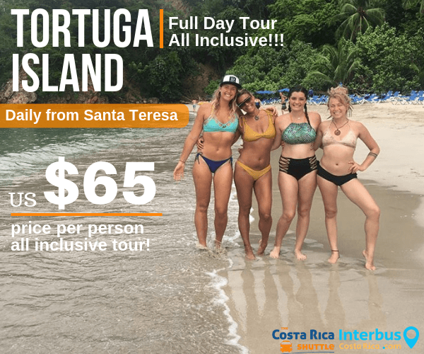 Tortuga Island Full Day Tour from Casa Azul Hotel Santa Teresa