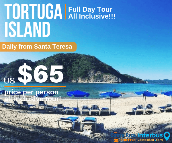 Tortuga Island Full Day Tour from Don Jons Santa Teresa