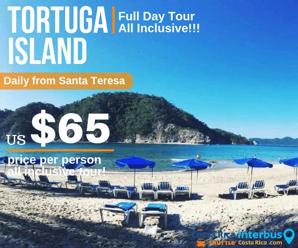 Tortuga Island Full Day Tour from Apartamentos Plaza Royal Santa Teresa
