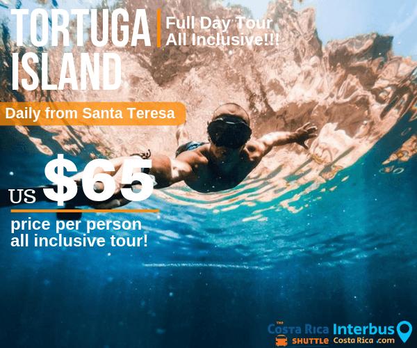 Tortuga Island Full Day Tour from Horizon Hotel Santa Teresa