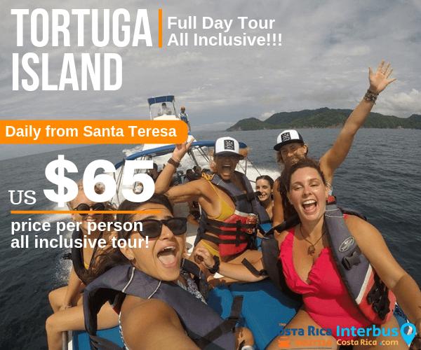 Tortuga Island Full Day Tour from La Posada Hostel Santa Teresa