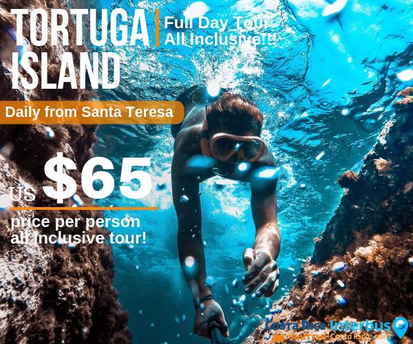 Tortuga Island Full Day Tour from Ranchos Itauna  Santa Teresa