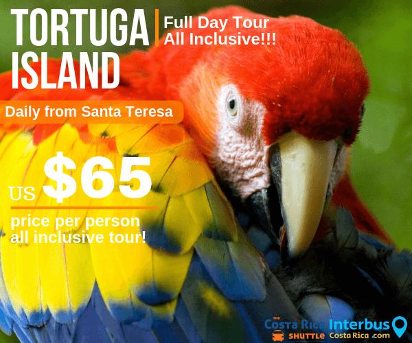 Tortuga Island Full Day Tour from Surf Santuario Hotel Santa Teresa