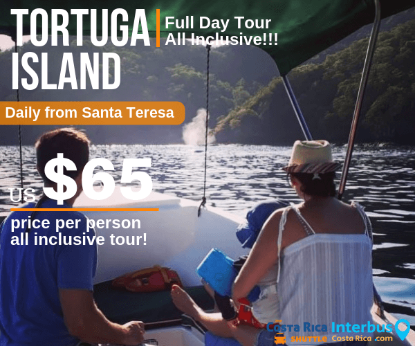 Tortuga Island Full Day Tour from Tranquilo Backpackers Santa Teresa