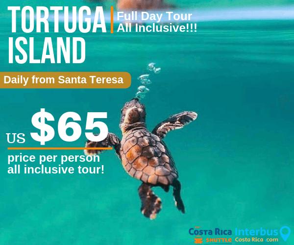 Tortuga Island Full Day Tour from Zula Inn Apartotel Santa Teresa