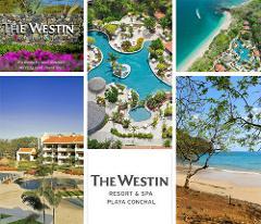 San Jose Airport to The Westin Resort Playa Conchal - Private Transportation