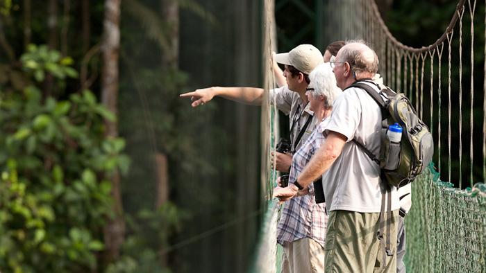 San Jose to Dominical Carara National Park Naturist Guided Hike