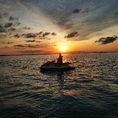 Honey Rider Sunrise
