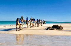 Morning Tour Broomes Blue Camels (SEASONAL)