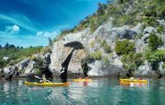 Winter Special - Kayak to the Maori Rock Carvings