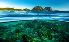 Boat Based - Seascape & Underwater Photography Tour