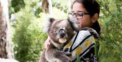 Koala Holding (public)