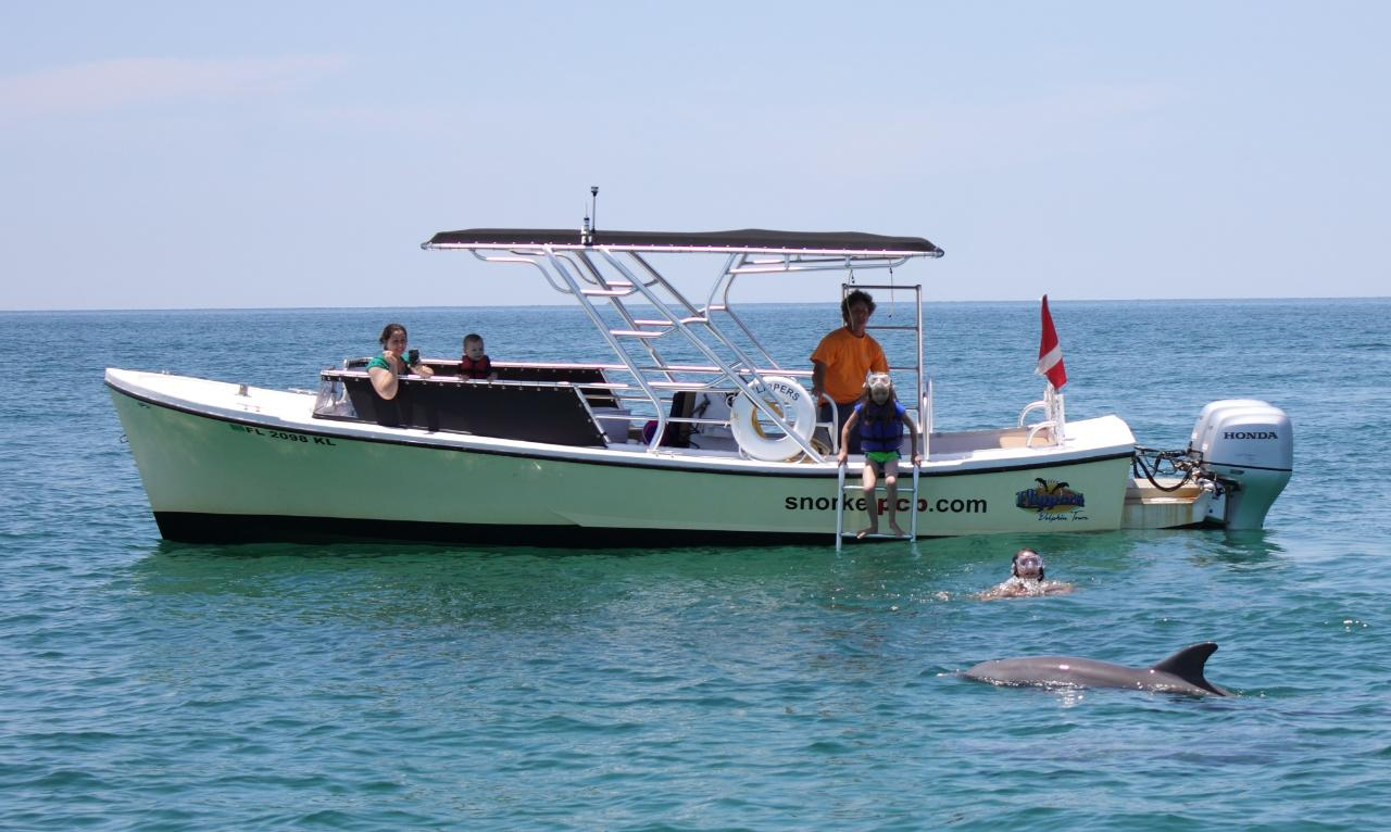 Dolphin Boat Tours #1
