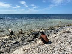 Abrolhos Island Day Trip onboard Fortitude