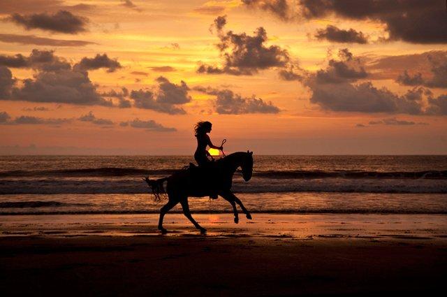 Uvita Horseback Riding Experience